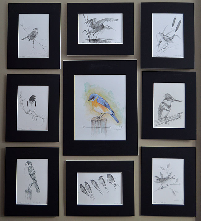 Build your original bird art collection according to your Life List